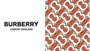 imagen-burberry-disenada-peter-saville