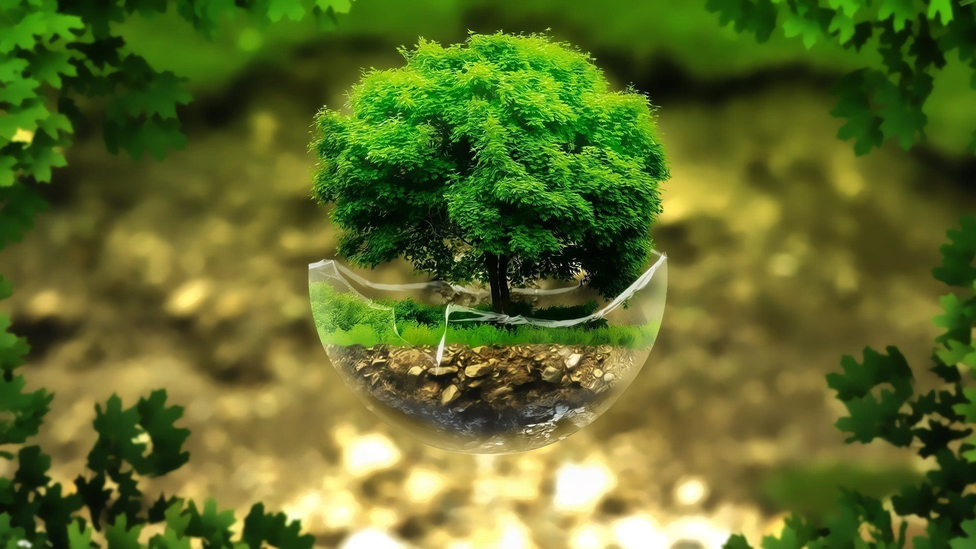 bonsai-3d-tree-rendering-ecology