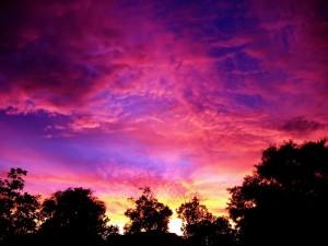 fiery_pink_sunset_2_by_richardxthripp