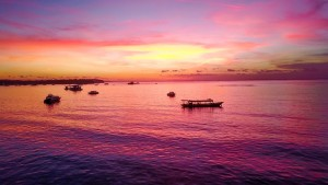 rosa-mar