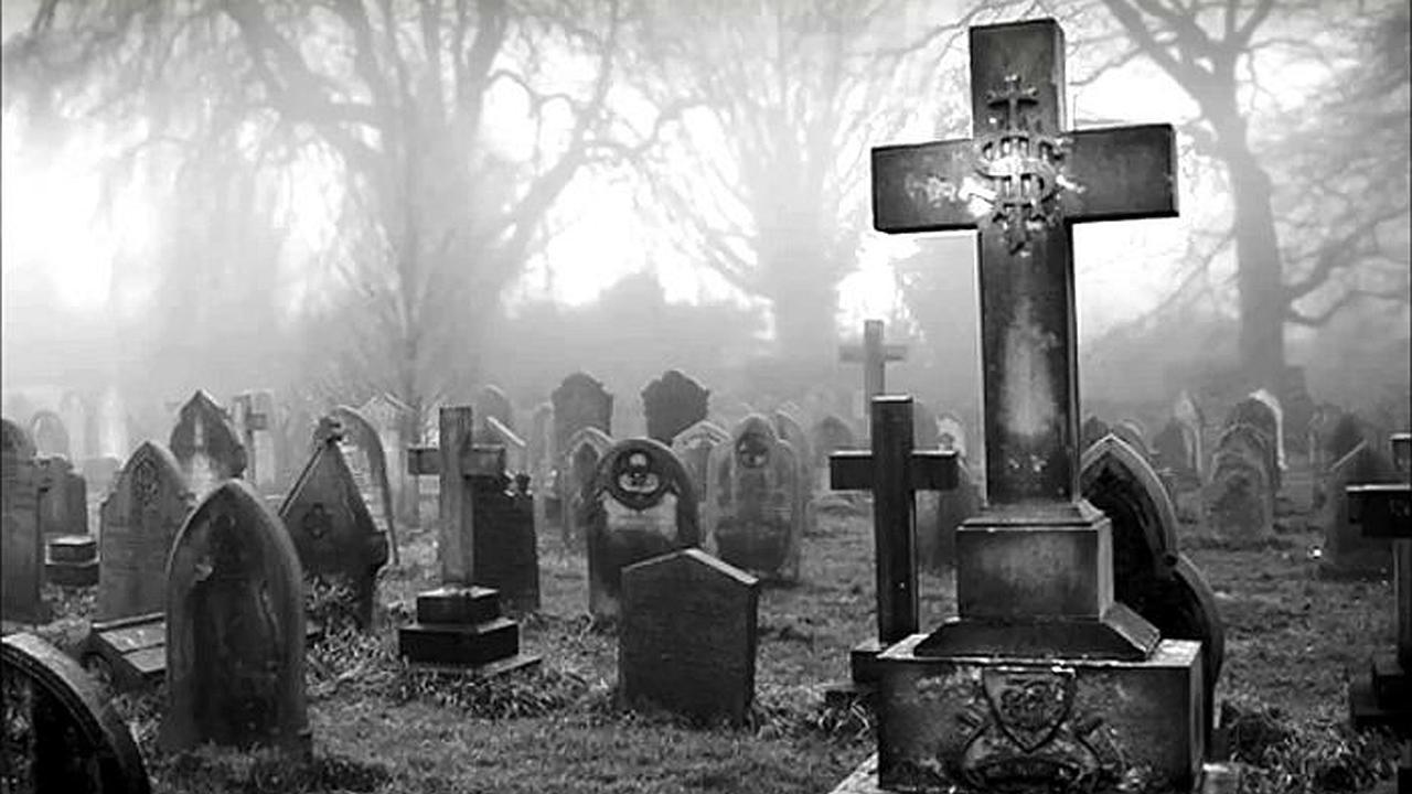 llevenme-al-cementerio_3wqf1M
